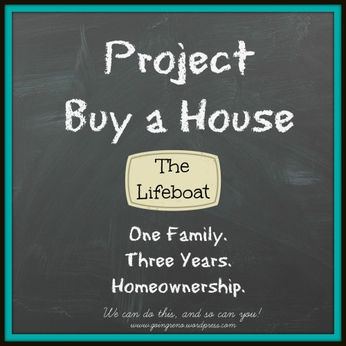 The Lifeboat holds your money for when you need it--it can be the difference between disaster and hanging on. Come learn about this important part of Project Buy a House.