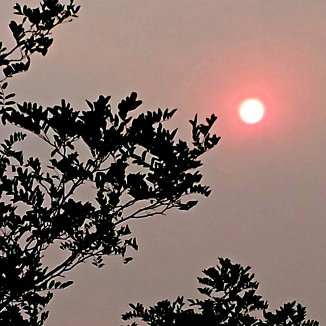 smokey sunset in Reno--neon sun.